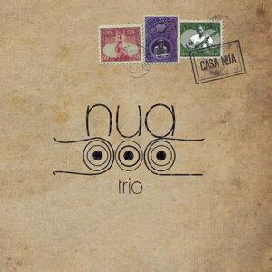 Nua Trio アーティスト写真