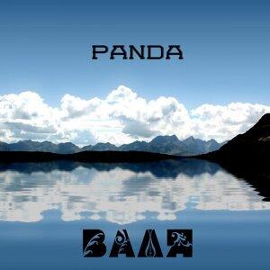 Panda 歌手頭像