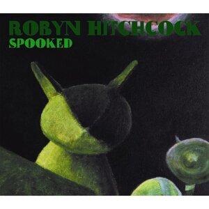 Robyn Hitchcock 歌手頭像