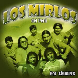 Los Mirlos Del Peru 歌手頭像