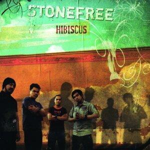 Stonefree 歌手頭像