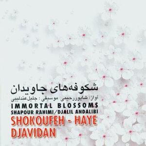 Shahpour Rahimi 歌手頭像