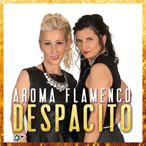 Aroma Flamenco 歌手頭像