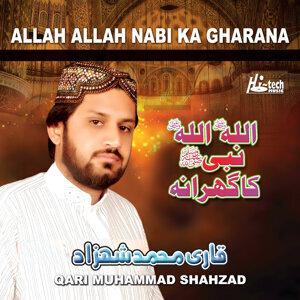Qari Muhammad Shahzad 歌手頭像