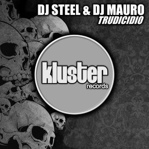 DJ Steel, DJ Mauro 歌手頭像