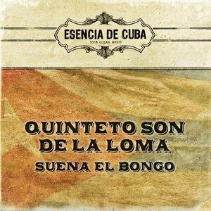 Quinteto Son De La Loma 歌手頭像