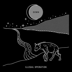 Illegal Operation 歌手頭像