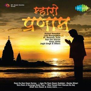 Vani Jairam, Chorus アーティスト写真