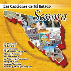 Las Canciones De Mi Estado Sonora 歌手頭像