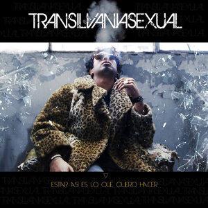 Transilvania Sexual 歌手頭像
