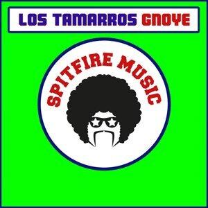 Los Tamarros 歌手頭像