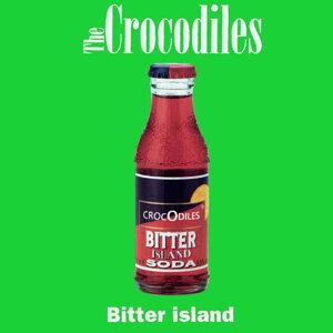 The Crocodiles 歌手頭像