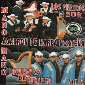 Los Pericos Del Sur アーティスト写真