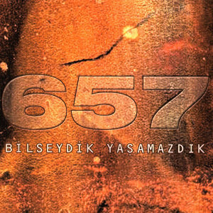 657 歌手頭像