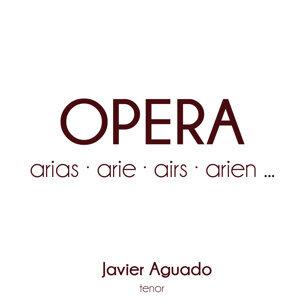 Javier Aguado 歌手頭像