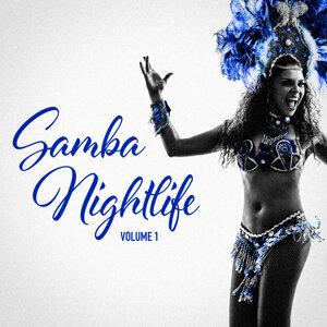 Brazil Samba Party Hits アーティスト写真