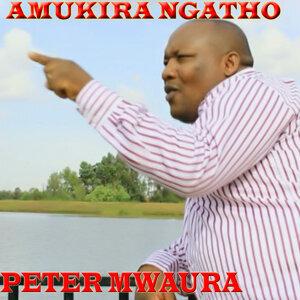 Peter Mwaura アーティスト写真
