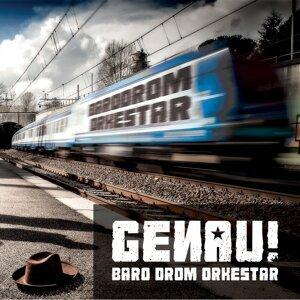 Baro Drom Orkestar アーティスト写真