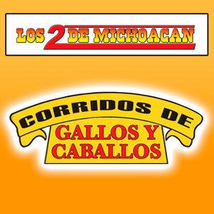 Los 2 De Michoacán 歌手頭像