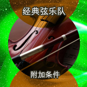 The Classic String Orchestra 歌手頭像
