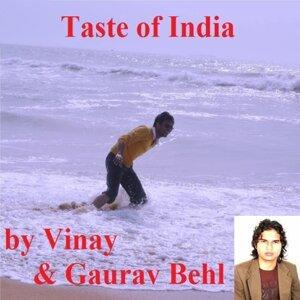 Vinay Behl & Gaurav Behl 歌手頭像