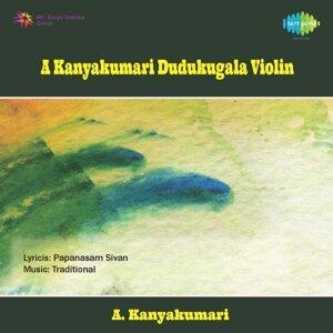 A. Kanyakumari, Haridwaramangalam A.K. Palanivel(Thavil), E.M.Subramaniam(Ghatam), B. Rajashekar(Morsing) 歌手頭像
