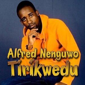 Alfred Nenguwo アーティスト写真