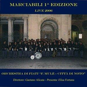 Orchestra di fiati Francesco Mulè Città di Noto, Gaetano Alicata アーティスト写真