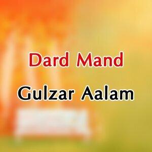 Gulzar Aalam アーティスト写真