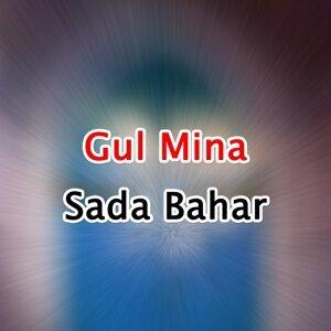Gul Mina アーティスト写真