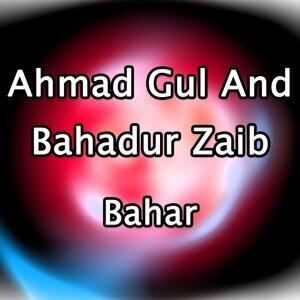 Ahmad Gul, Bahadur Zaib アーティスト写真