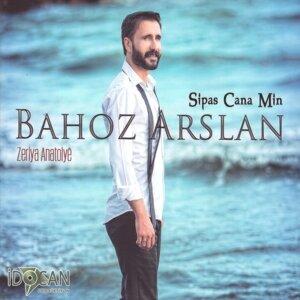 Bahoz Arslan 歌手頭像