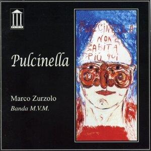 Marco Zurzolo 歌手頭像