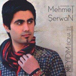 Mehmet Şerwan 歌手頭像