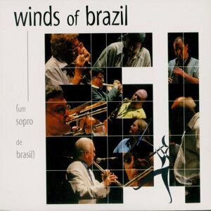 Winds of Brazil アーティスト写真
