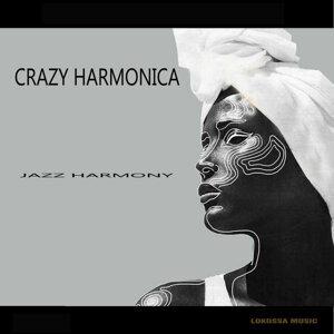 Crazy Harmonica アーティスト写真
