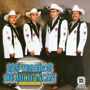 Los Tesoros De Michoacán 歌手頭像