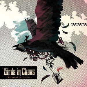 Birds In Chaos 歌手頭像