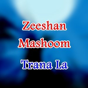Zeeshan Mashoom 歌手頭像