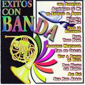 Banda Primos 歌手頭像