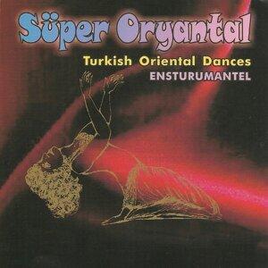 Selahattin Özkan 歌手頭像