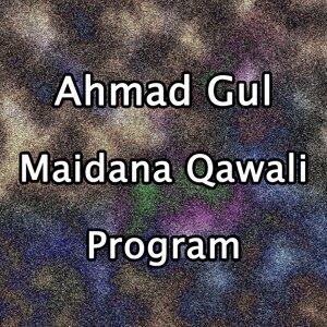 Ahmad Gul 歌手頭像
