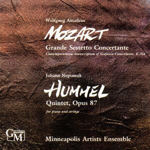 Minneapolis Artists Ensemble 歌手頭像
