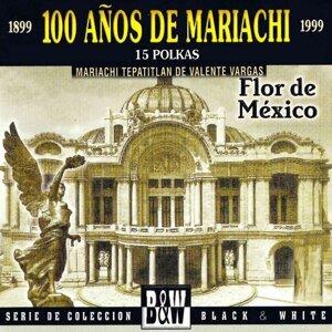 Mariachi Tepatitlan de Valente Vargas アーティスト写真