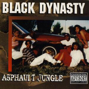 Black Dynasty 歌手頭像