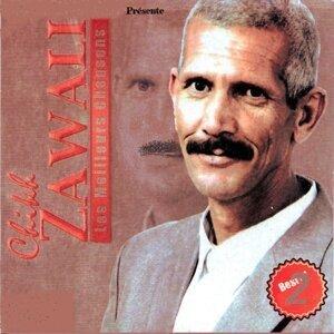 Cheikh Zawali 歌手頭像