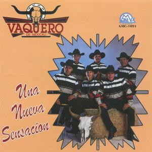 Vaquero De Mexicali 歌手頭像