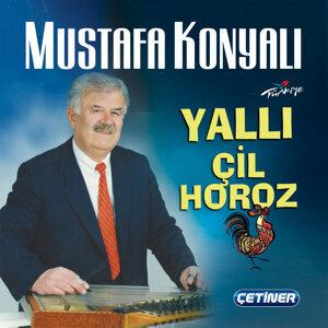 Mustafa Konyalı 歌手頭像