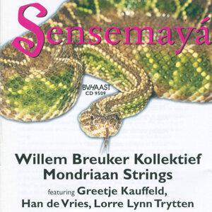 Willem Breuker Kollektief / Mondriaan Strings 歌手頭像