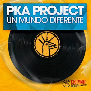 PKA Project アーティスト写真
